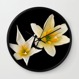White flowers with black Wall Clock