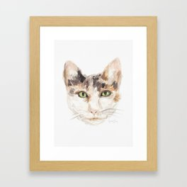 Calico Cat Portrait - Remembering Bella Framed Art Print