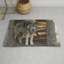 Forest Timber Wolf Rug