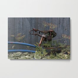 Forgotten Bicycle Metal Print