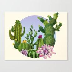 Cactus & Succulents Canvas Print