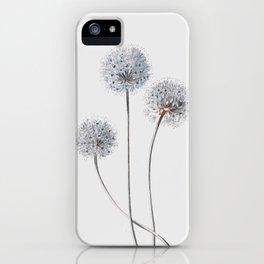 Dandelion 2 iPhone Case