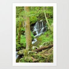 Smoky Mountains Waterfall 1 Art Print