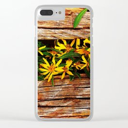 Boreas Pass Summit Clear iPhone Case