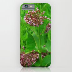 Garden Flowers iPhone 6s Slim Case