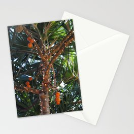 Tropical Breeze Stationery Cards