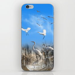 White Egrets in a Morning 1 iPhone Skin