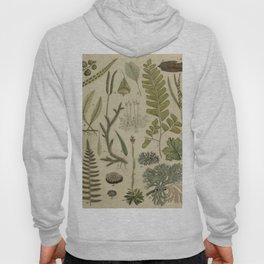 Ferns And Mosses Hoody