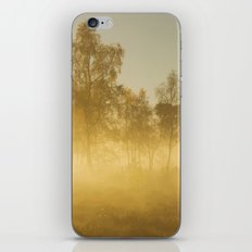 Road To Headley iPhone Skin