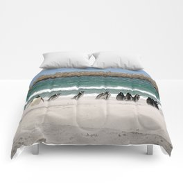 Magellanic Penguins on the Beach Comforters