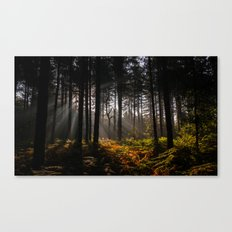 Occlude Canvas Print