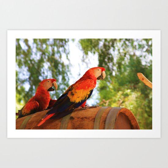 ~Birdy Beauty's~ Art Print