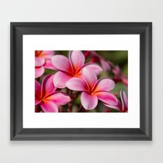 Divine Joy Framed Art Print