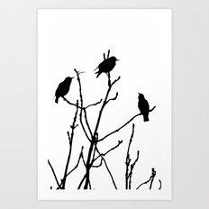 Black Birds on White Art Print