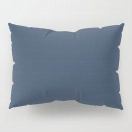 Pickled Azure Pillow Sham