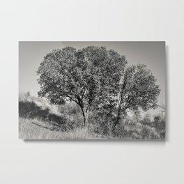 Naturally amazing Metal Print