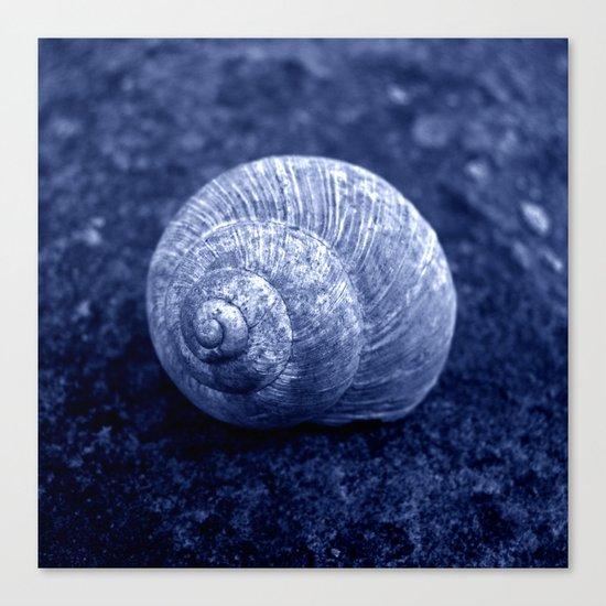 blue snail shell Canvas Print
