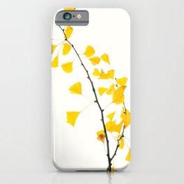 gingko biloba branch iPhone Case