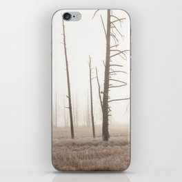 Yellowstone National Park- Foggy morning at Tangled Creek iPhone Skin