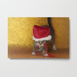 Cat Portrait | Christmas Metal Print