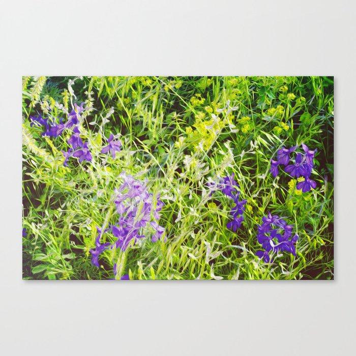 Wild Delphinium Bliss Canvas Print