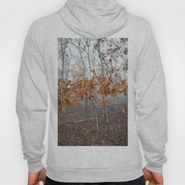 Fall leaves #10 Hoody