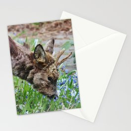 Little roe deer in backyard Stationery Cards