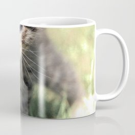 Katze, Cat Coffee Mug
