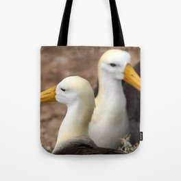 Waved Albatross couple in Galapagos Tote Bag