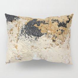 Peeling Paint 9410 Pillow Sham