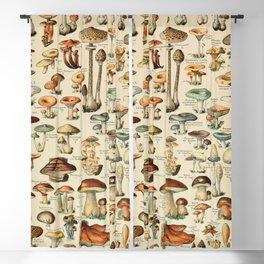 Adolphe Millot champignons 1800s Lithograph Vintage-french Blackout Curtain