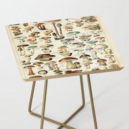 Vintage Mushroom & Fungi Chart by Adolphe Millot Side Table
