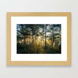 Great Awakening Framed Art Print