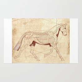 Da Vinci Horse: The Trot Revealed Rug