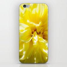 yellowSea iPhone & iPod Skin