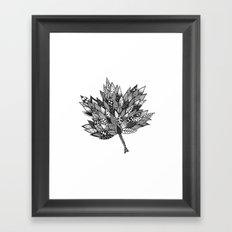 Zentangle Leaf Framed Art Print