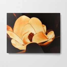 Amber Magnolia Metal Print