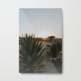 Desert Sunset | Agafay Desert Terre Dese Etoiles Morocco Metal Print