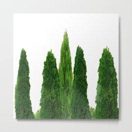 GREEN CYPRESS TREES ON WHITE Metal Print