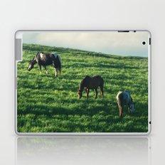 Horses on the Hill Laptop & iPad Skin