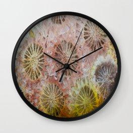 Indonesian Coral Wall Clock