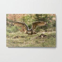 Eagle Owl In Flight Metal Print