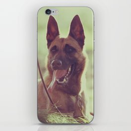 Malinios Beauty dog picture iPhone Skin