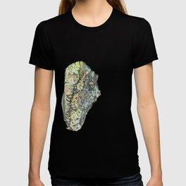 Kwrawk T-shirt