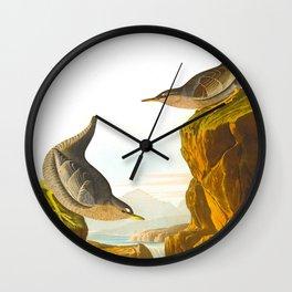 Columbian Water Ouzel James Audubon Scientific Illustration Wall Clock