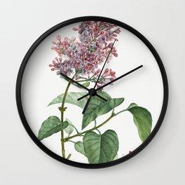 Comon lilac (Lilac vulgaris) from Traite des Arbres et Arbustes que lon cultive en France en pleine Wall Clock