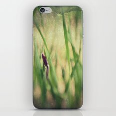 Getting ready to Rise and Shine iPhone & iPod Skin