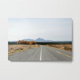 Kiwi Crossing Metal Print