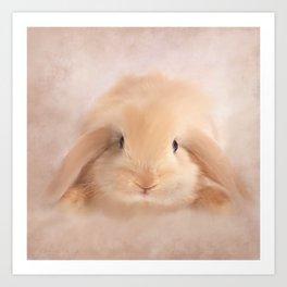 Soft Bunny Art Print