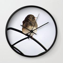 Pretty Winter Junco Wall Clock